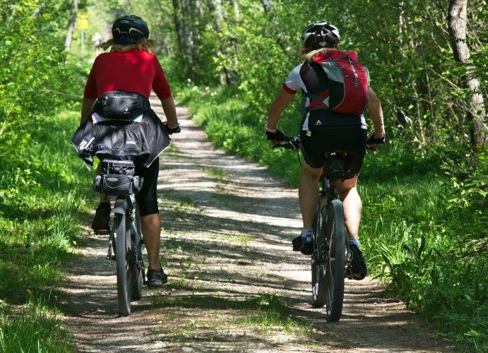 Rowery MTB: czym się wyróżniają?