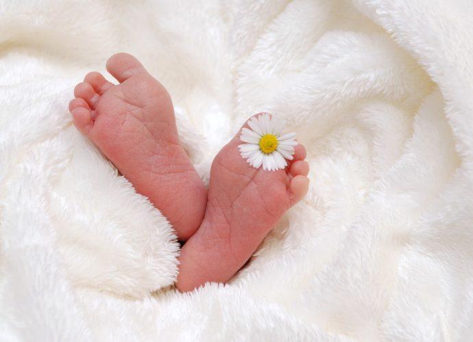 Dawczyni komórek jajowych do zapłodnienia pozaustrojowego