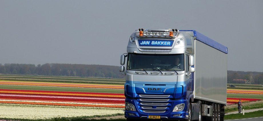 Samochody ciężarowe DAF